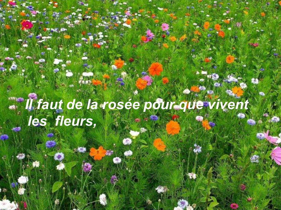 Il faut de la rosée pour que vivent les fleurs,