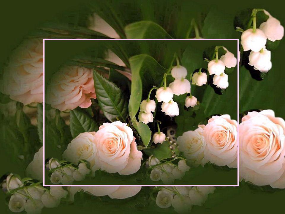 Présentation Lise Gingras Lise_gingras@videotron.ca Musique: Moments romantiques de Johannes Brahms Photos sur le Web Références: Valet Jade et Evene Site «Les amours de Mado» http://lesamoursdemado.com Mars 2008 Bonne journée!