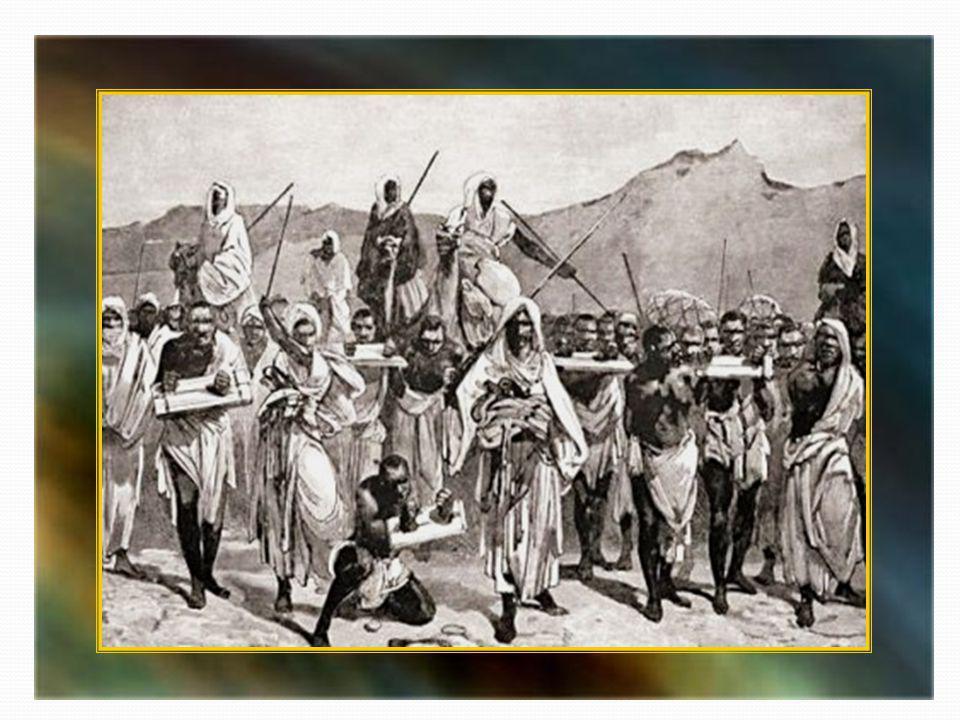 Lesclavage en terre dIslam est une donnée historique universellement reconnue y compris par les historiens musulmans.