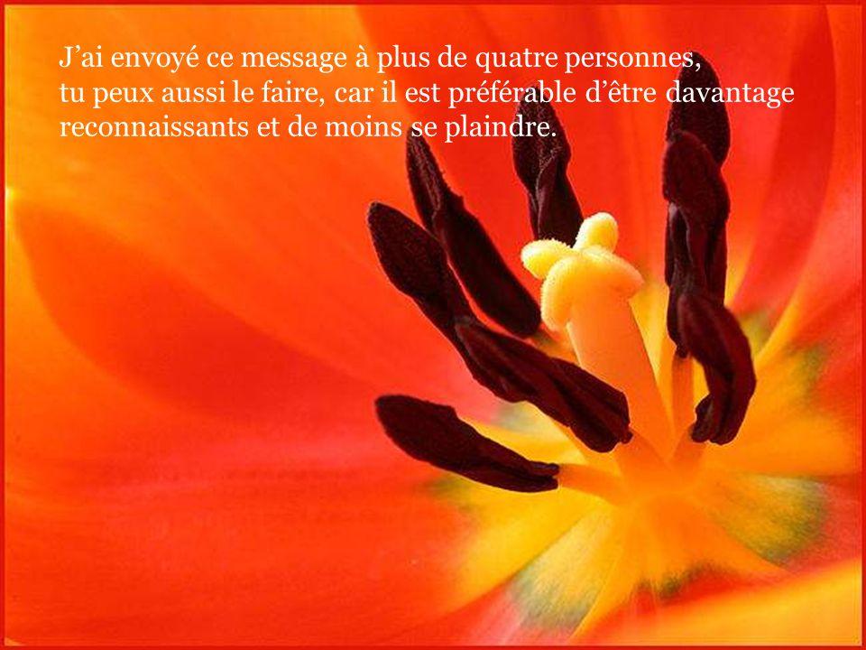 Père, je te demande de bénir mes amis, ma famille et mes connaissances. Accorde-leur une nouvelle révélation de ton amour et de ta grandeur.