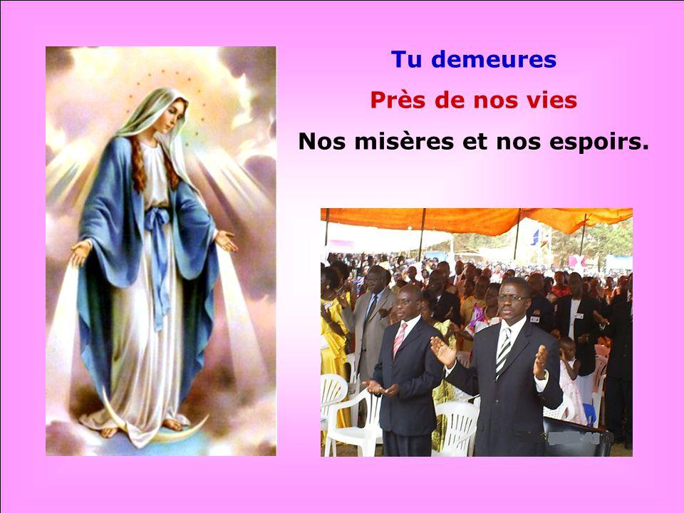 Pleine de Grâce, Nous te louons : AVE MARIA !