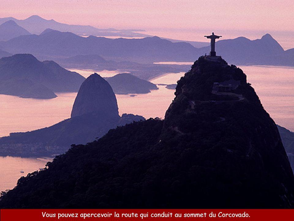 Vous pouvez apercevoir la route qui conduit au sommet du Corcovado.