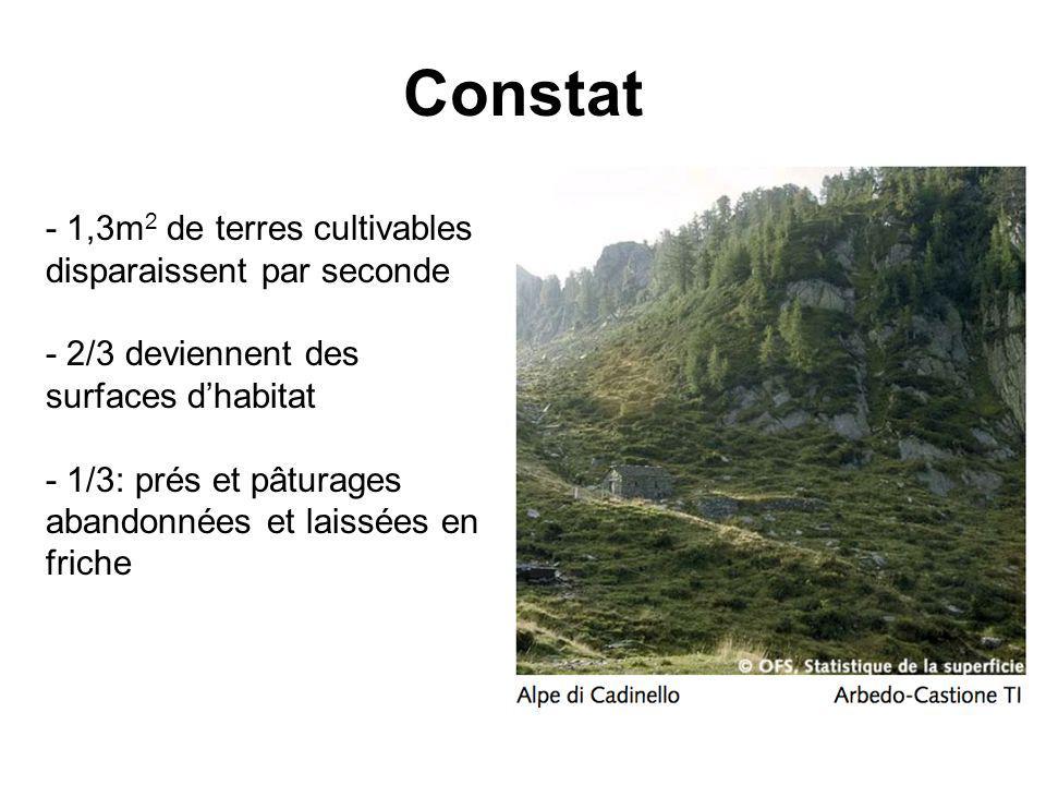 Constat - 1,3m 2 de terres cultivables disparaissent par seconde - 2/3 deviennent des surfaces dhabitat - 1/3: prés et pâturages abandonnées et laissées en friche