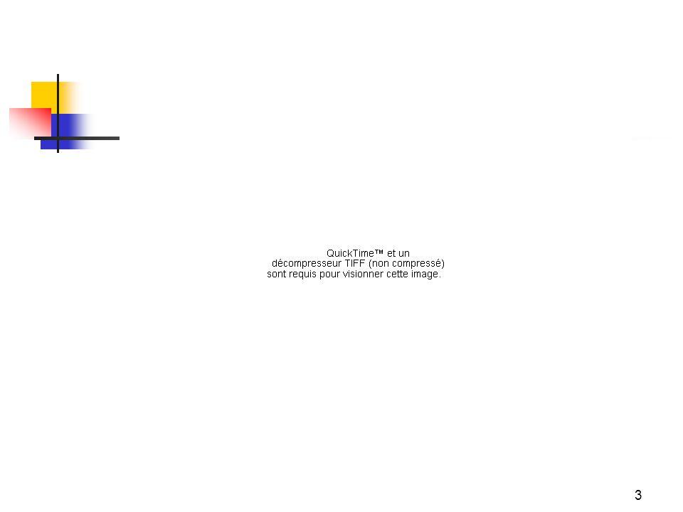 4 Lhéritage Épaisseur de la civilisation indienne, inscription dans une longue histoire et tradition Indépendance gagnée de belle manière, après mouvement de plus dun siècle Souvenir amer de la colonisation (et de la précédente mondialisation) Choix de principes socialistes de gestion de léconomie (Nehru en URSS), appliqués souplement sous forme d »économie mixte »