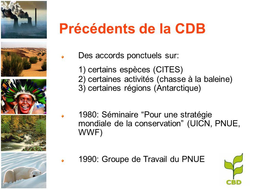 Précédents de la CDB Des accords ponctuels sur: 1) certains espèces (CITES) 2) certaines activités (chasse à la baleine) 3) certaines régions (Antarctique) 1980: Séminaire Pour une stratégie mondiale de la conservation (UICN, PNUE, WWF) 1990: Groupe de Travail du PNUE