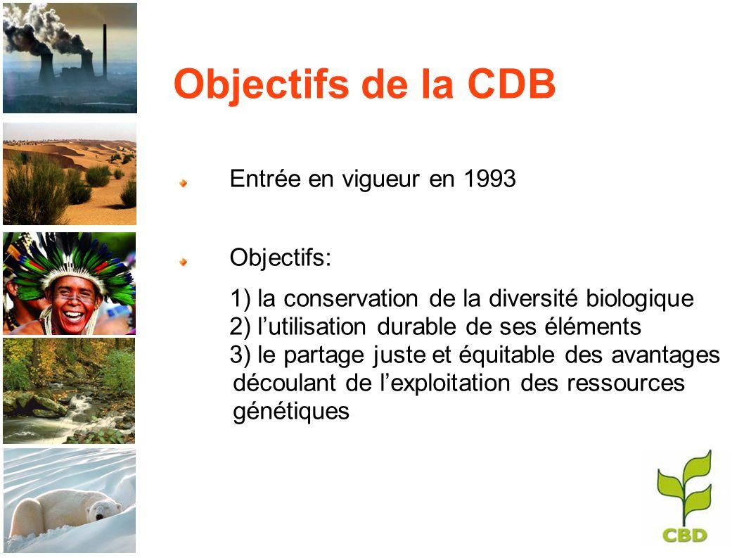 Objectifs de la CDB Entrée en vigueur en 1993 Objectifs: 1) la conservation de la diversité biologique 2) lutilisation durable de ses éléments 3) le partage juste et équitable des avantages découlant de lexploitation des ressources génétiques
