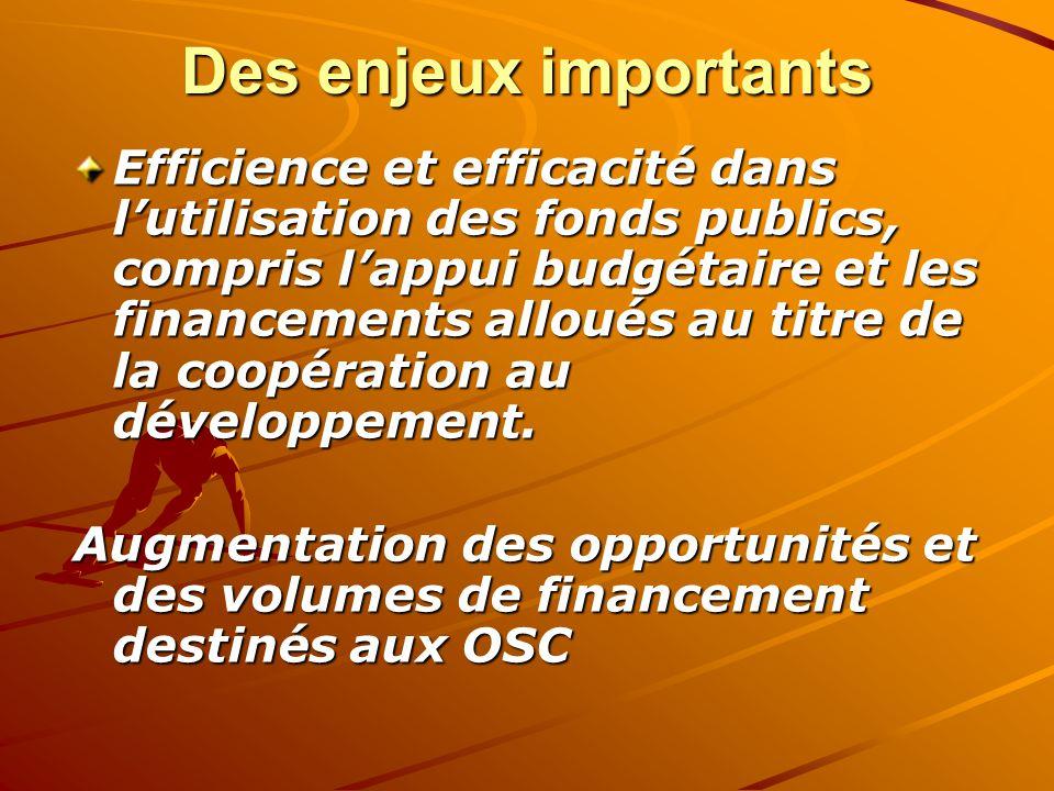 Des enjeux importants Efficience et efficacité dans lutilisation des fonds publics, compris lappui budgétaire et les financements alloués au titre de la coopération au développement.