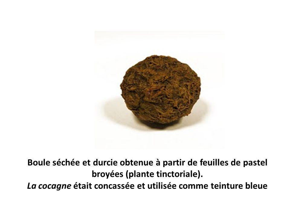 Boule séchée et durcie obtenue à partir de feuilles de pastel broyées (plante tinctoriale). La cocagne était concassée et utilisée comme teinture bleu