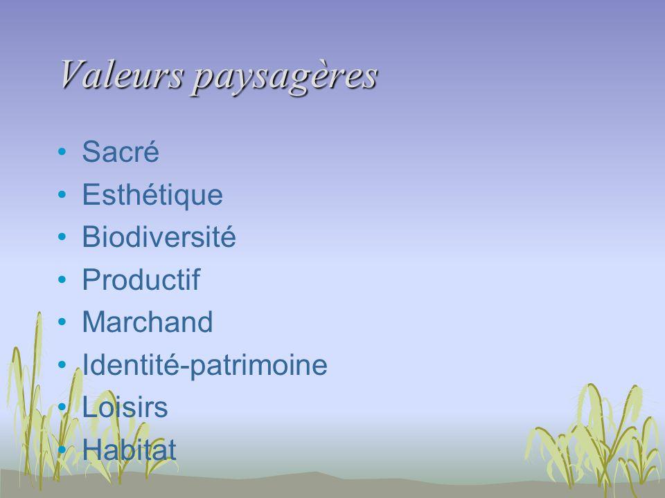 Valeurs paysagères Sacré Esthétique Biodiversité Productif Marchand Identité-patrimoine Loisirs Habitat