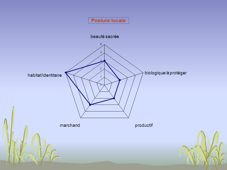 Posture locale 0 1 2 3 4 5 beauté sacrée biologique/à protéger productifmarchand habitat/identitaire