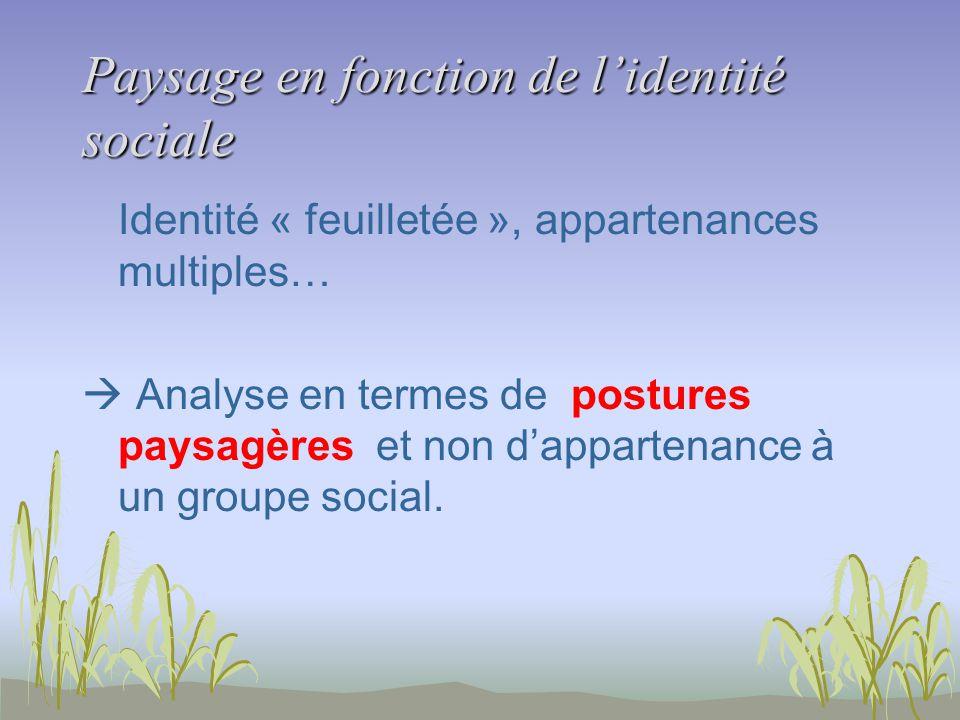 Paysage en fonction de lidentité sociale Identité « feuilletée », appartenances multiples… Analyse en termes de postures paysagères et non dappartenance à un groupe social.