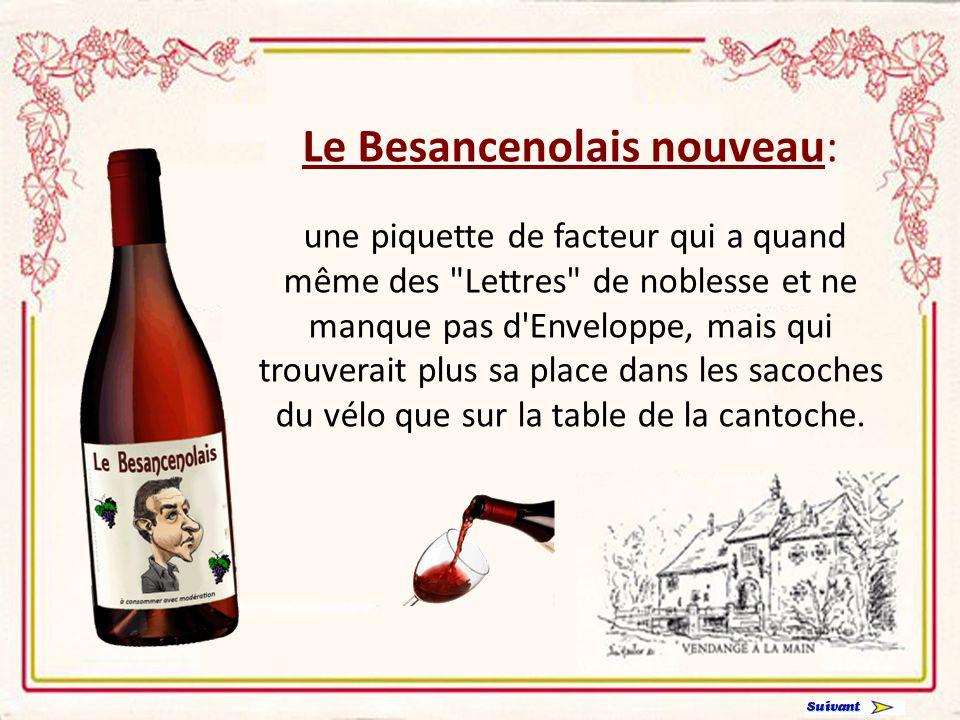 Le De Villepinolais nouveau: un arrière goût de faux-cul de bouteille, à servir en priorité dans un dîner de cons pour accompagner un gratin de cornichons endimanchés.
