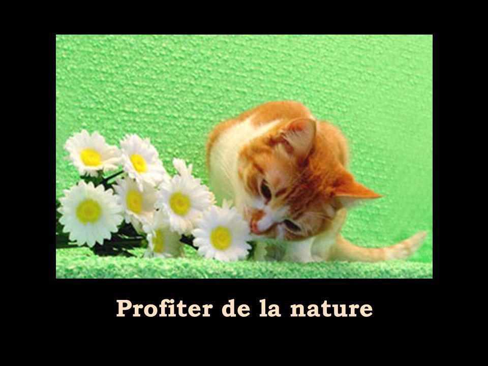 Profiter de la nature