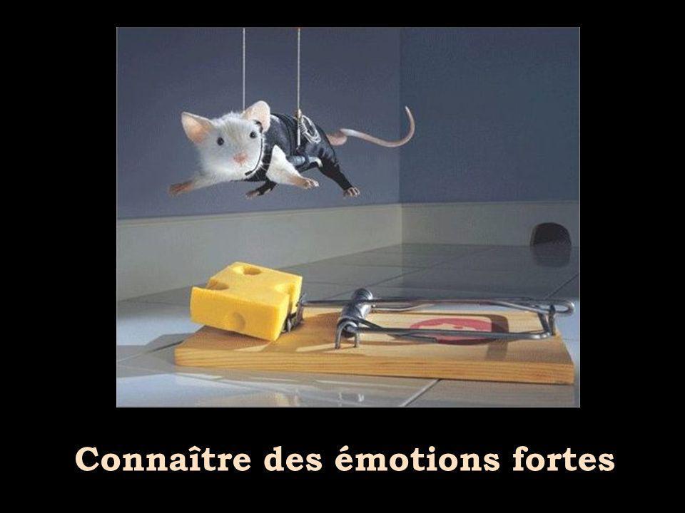Connaître des émotions fortes