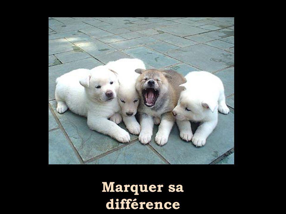 Marquer sa différence