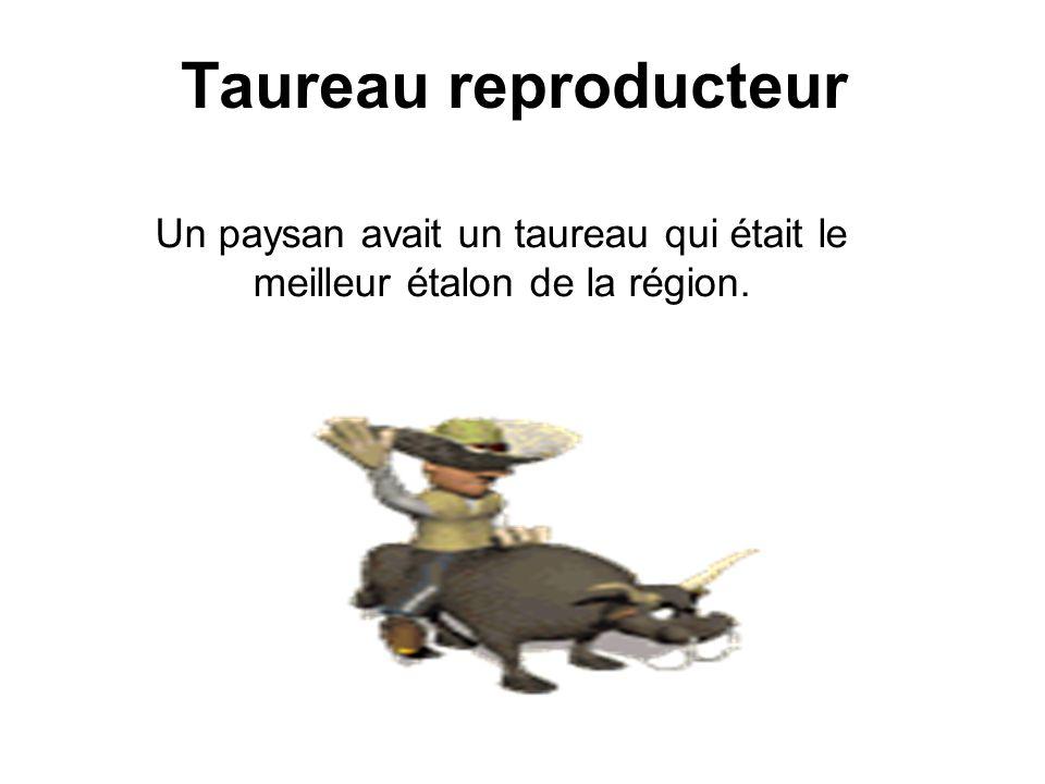 Diaporama PPS réalisé pour http://www.diaporamas-a-la-con.com http://www.diaporamas-a-la-con.com Taureau reproducteur Un paysan avait un taureau qui était le meilleur étalon de la région.