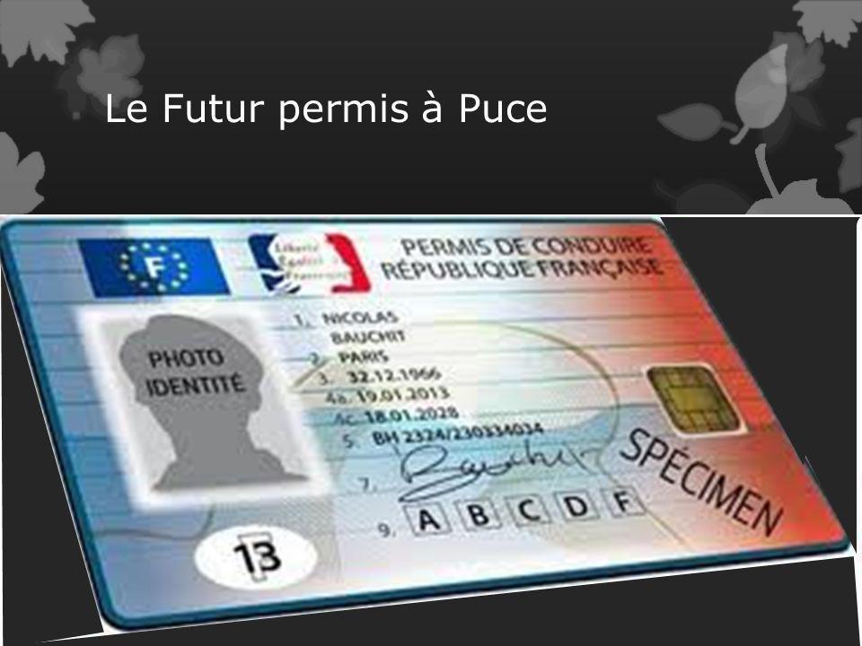 Nouveau permis à Puce 2013 Ce nouveau permis entrera en vigueur le 19 janvier 2013 Il sera renouvelable tous les 15 ans sans pour cela repasser lexame