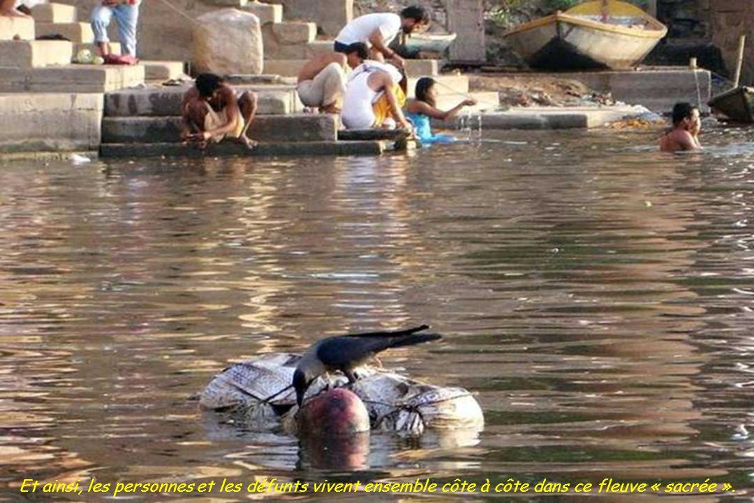 Et considérant que le Gange est un dieu, tout peut y être jeté; Il a le pouvoir de tout purifier sans notre aide.