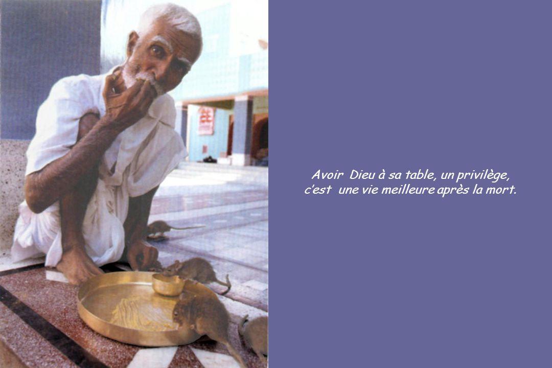 Avoir Dieu à sa table, un privilège, cest une vie meilleure après la mort.