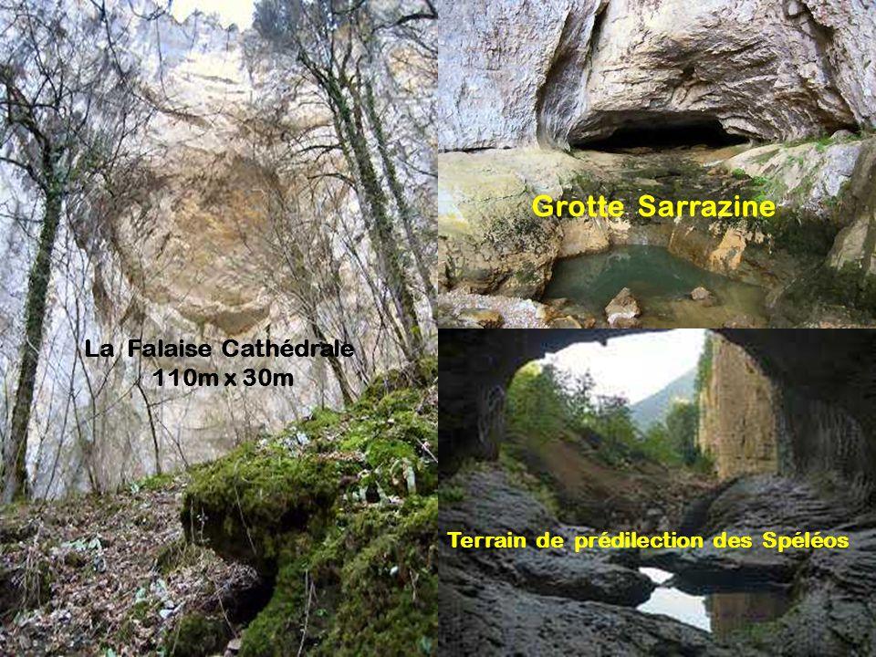Source du Lison 25 km (confluence avec la Loue)