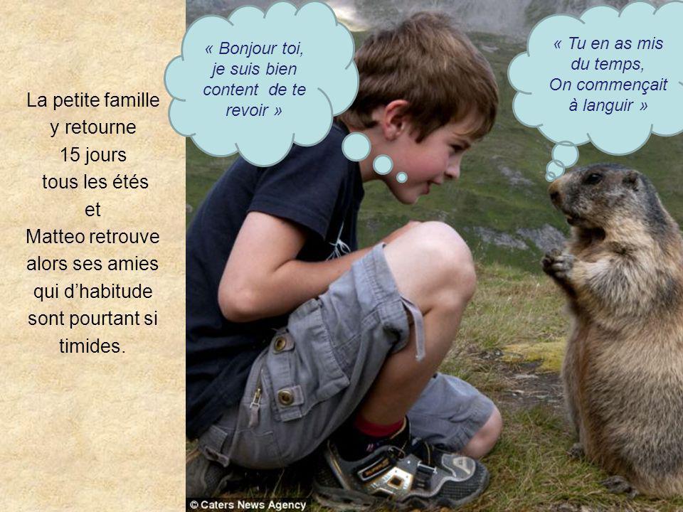 Images superbes et très émouvantes... incroyables Un gamin qui sait parler aux marmottes … !! Matteo Walch est surnommé Mowgli par le Daily Mail. Ce g