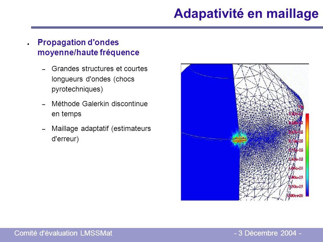 Comité d'évaluation LMSSMat - 3 Décembre 2004 - Propagation d'ondes moyenne/haute fréquence – Grandes structures et courtes longueurs d'ondes (chocs p