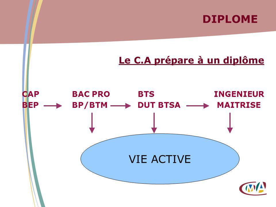 DIPLOME Le C.A prépare à un diplôme CAP BAC PRO BTS INGENIEUR BEP BP/BTM DUT BTSA MAITRISE VIE ACTIVE