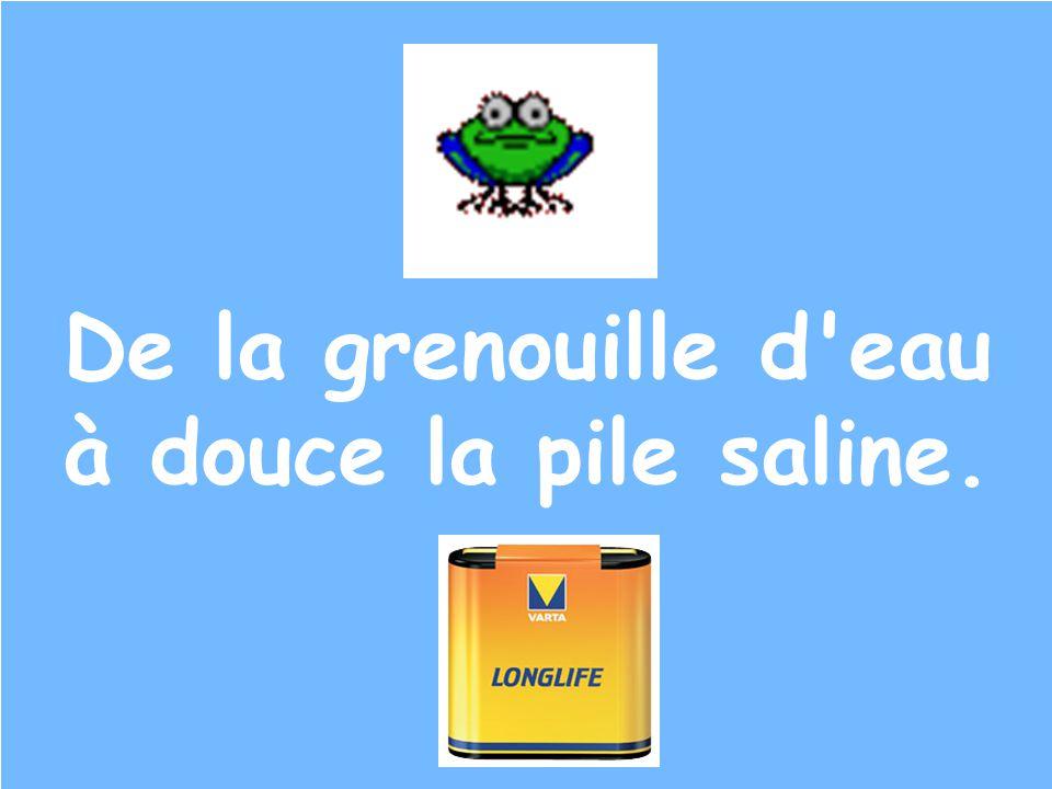 De la grenouille d'eau à douce la pile saline.