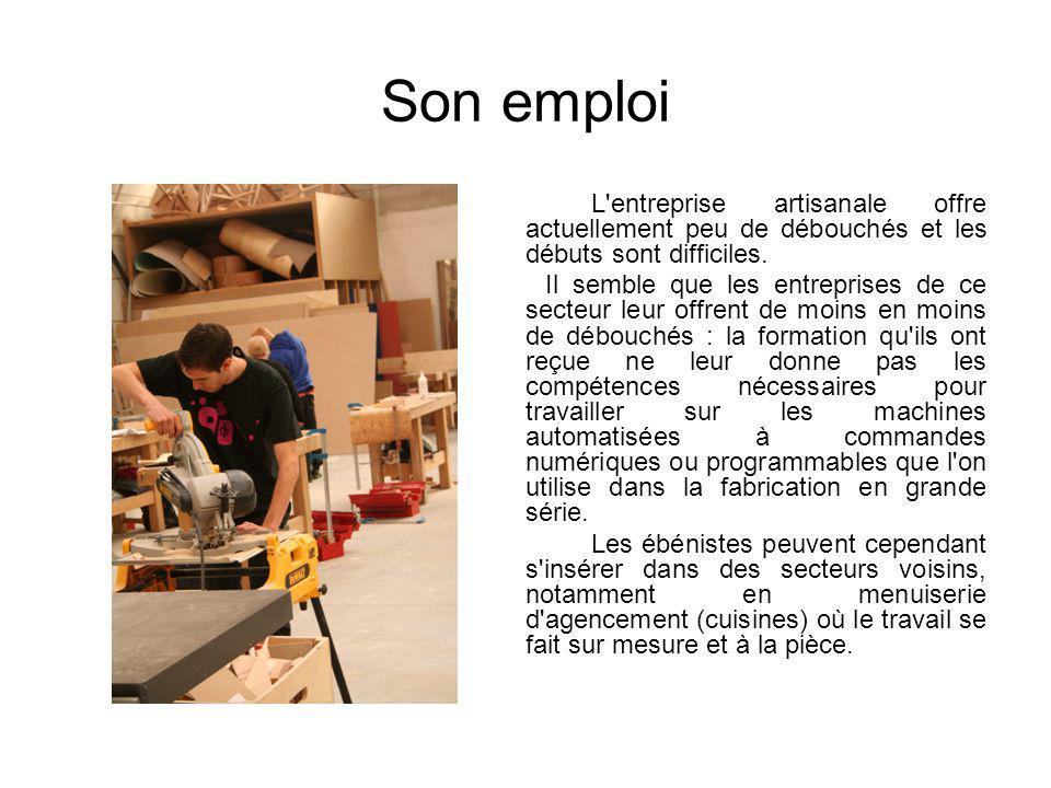 Son emploi L'entreprise artisanale offre actuellement peu de débouchés et les débuts sont difficiles. Il semble que les entreprises de ce secteur leur