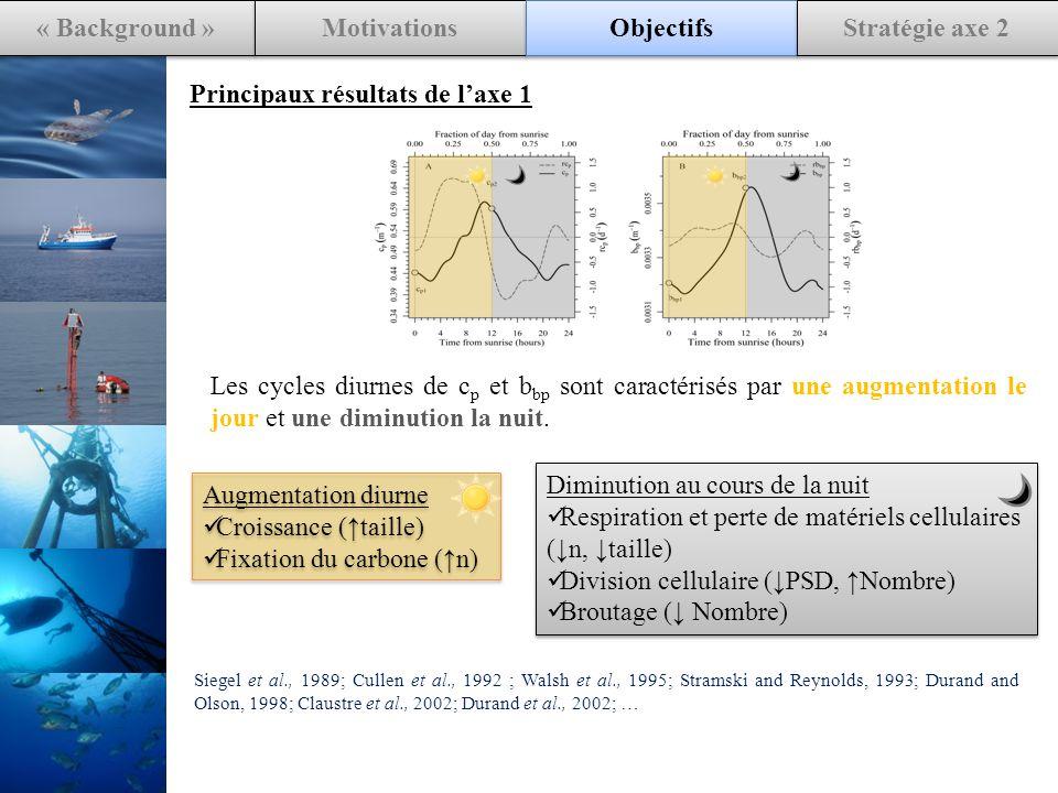 « Background » Motivations Objectifs Stratégie axe 2 Principaux résultats de laxe 1 Les cycles diurnes de c p et b bp sont caractérisés par une augmentation le jour et une diminution la nuit.