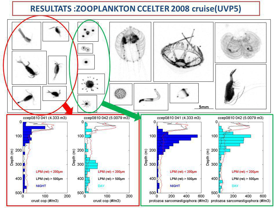 5mm RESULTATS :ZOOPLANKTON CCELTER 2008 cruise(UVP5)