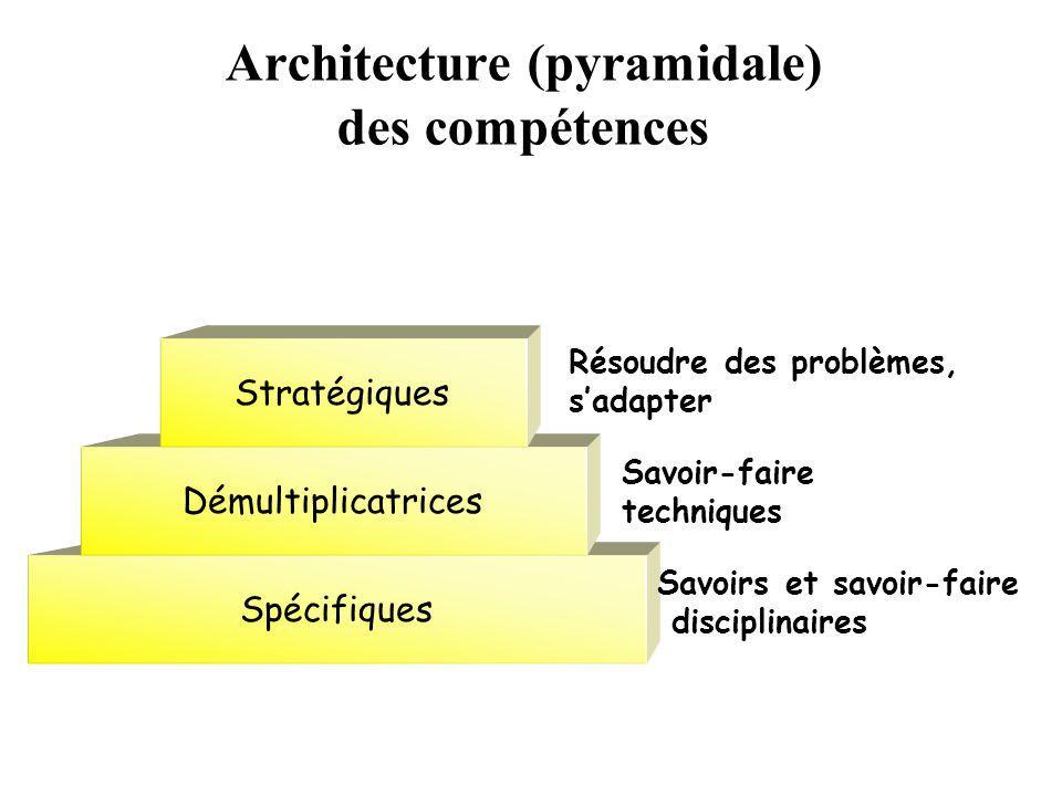 Architecture (pyramidale) des compétences Spécifiques Démultiplicatrices Stratégiques Dynamiques Savoirs et savoir-faire disciplinaires Savoir-faire techniques généraux Résoudre des problèmes, sadapter Savoir-être, vouloir, désirer, détester