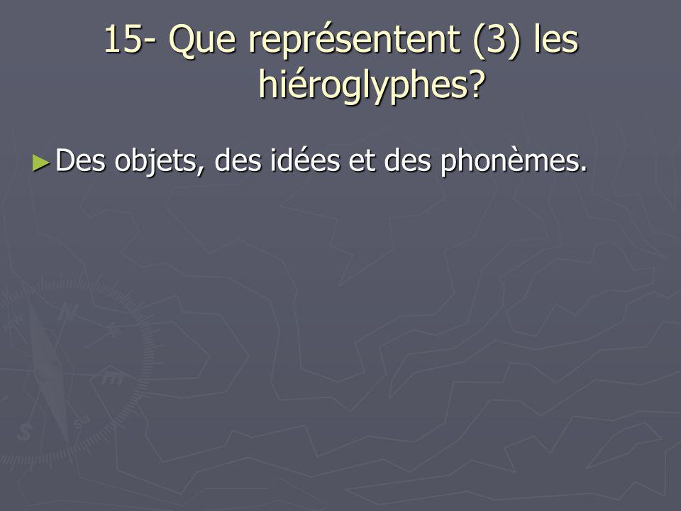 15- Que représentent (3) les hiéroglyphes? Des objets, des idées et des phonèmes. Des objets, des idées et des phonèmes.