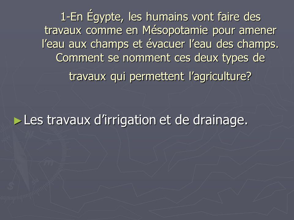 1-En Égypte, les humains vont faire des travaux comme en Mésopotamie pour amener leau aux champs et évacuer leau des champs. Comment se nomment ces de