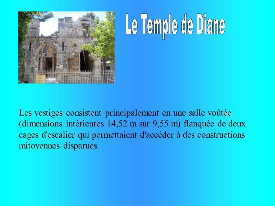 Les vestiges consistent principalement en une salle voûtée (dimensions intérieures 14,52 m sur 9,55 m) flanquée de deux cages d'escalier qui permettai