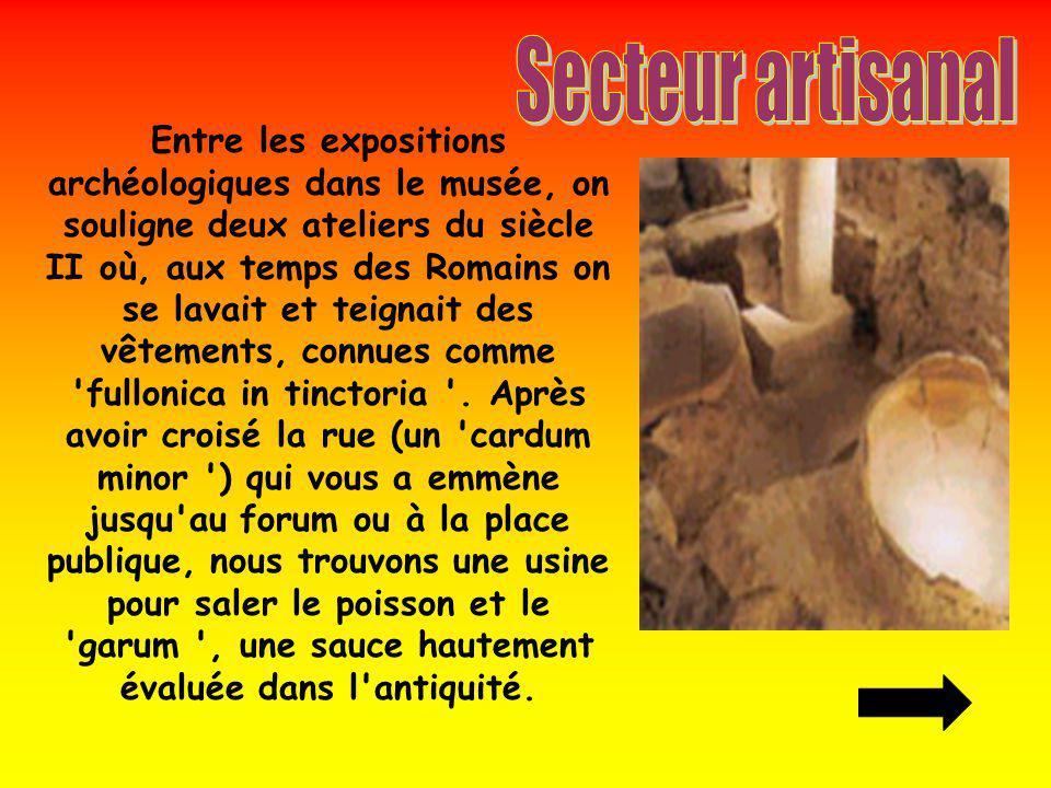 Entre les expositions archéologiques dans le musée, on souligne deux ateliers du siècle II où, aux temps des Romains on se lavait et teignait des vête