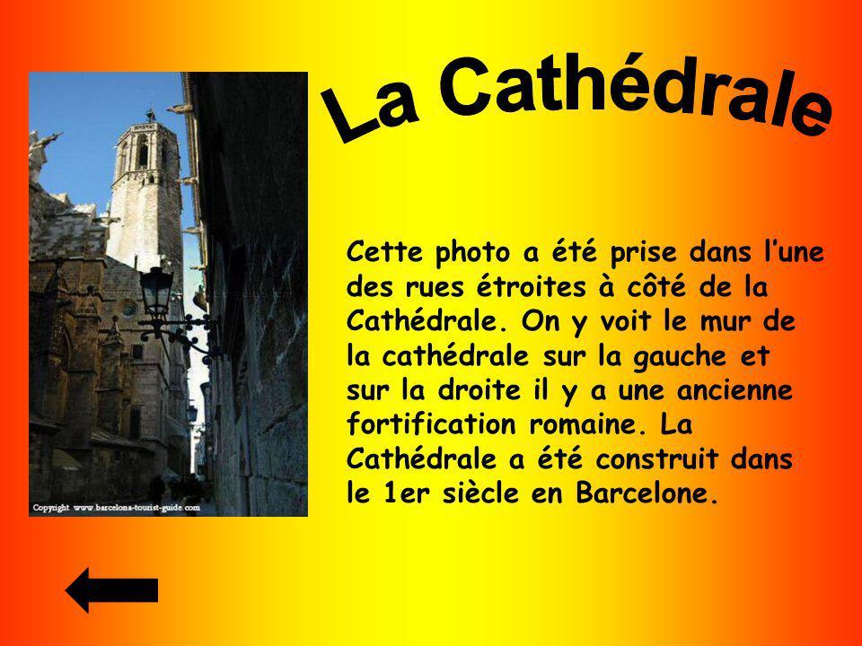 Cette photo a été prise dans lune des rues étroites à côté de la Cathédrale. On y voit le mur de la cathédrale sur la gauche et sur la droite il y a u