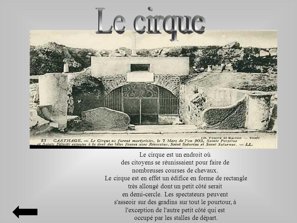 Le cirque est un endroit où des citoyens se réunissaient pour faire de nombreuses courses de chevaux. Le cirque est en effet un édifice en forme de re