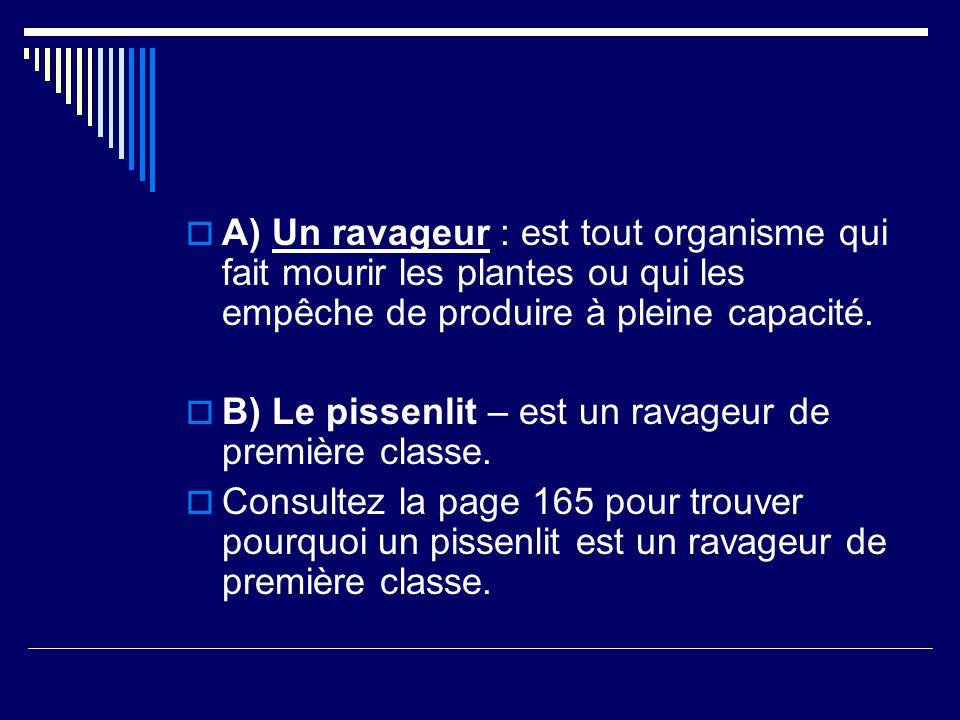 Activité en groupes Monsieur Lendvay va diviser la classe en 5 groupes.