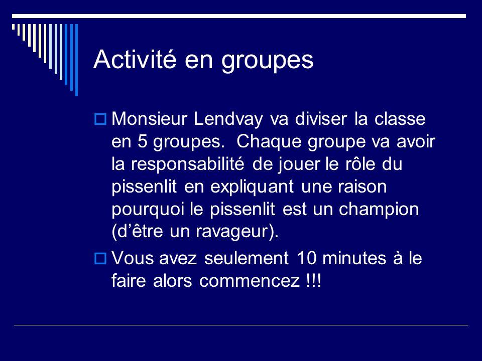 Activité en groupes Monsieur Lendvay va diviser la classe en 5 groupes. Chaque groupe va avoir la responsabilité de jouer le rôle du pissenlit en expl