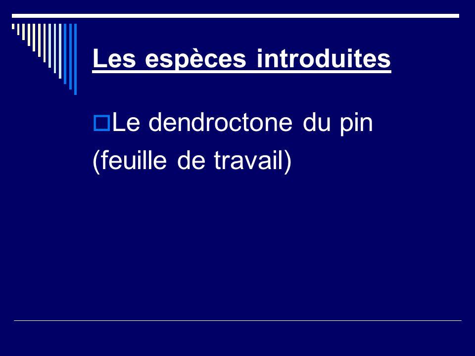 Les espèces introduites Le dendroctone du pin (feuille de travail)
