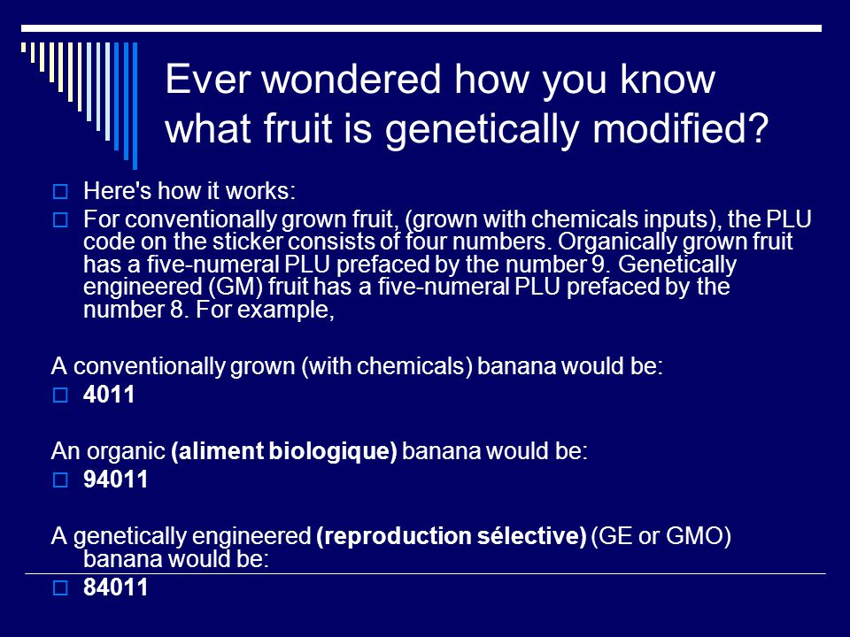 Ever wondered how you know what fruit is genetically modified? Here's how it works: For conventionally grown fruit, (grown with chemicals inputs), the