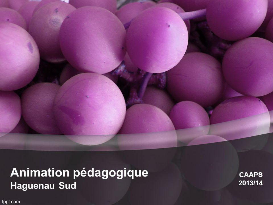 Animation pédagogique Haguenau Sud CAAPS 2013/14
