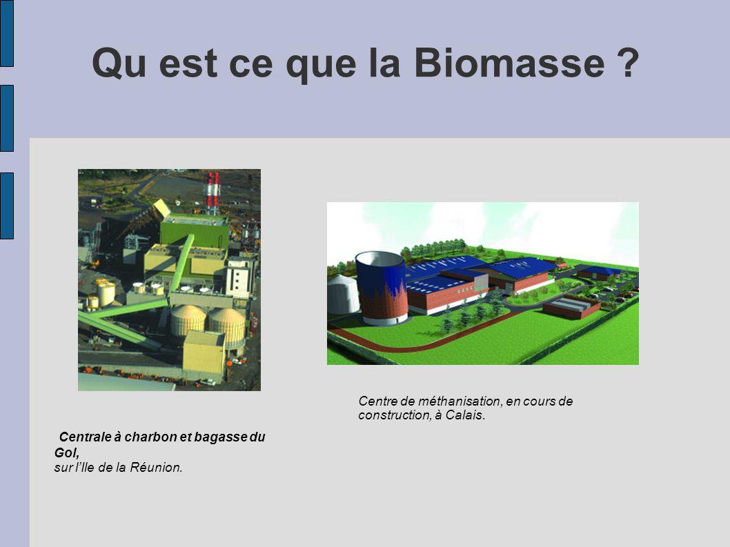 Qu est ce que la Biomasse ? Centrale à charbon et bagasse du Gol, sur lIle de la Réunion. Centre de méthanisation, en cours de construction, à Calais.