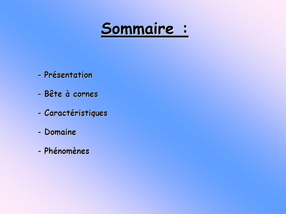 - Présentation - Bête à cornes - Caractéristiques - Domaine - Phénomènes Sommaire :