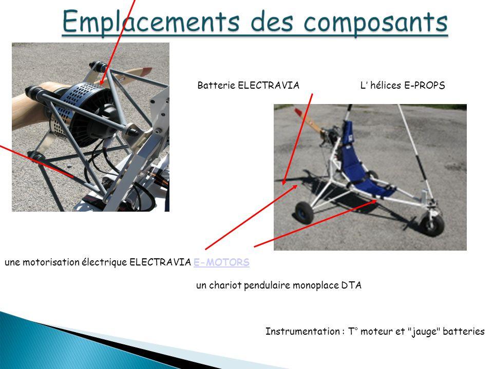 une motorisation électrique ELECTRAVIA E-MOTORSE-MOTORS un chariot pendulaire monoplace DTA Batterie ELECTRAVIA Instrumentation : T° moteur et