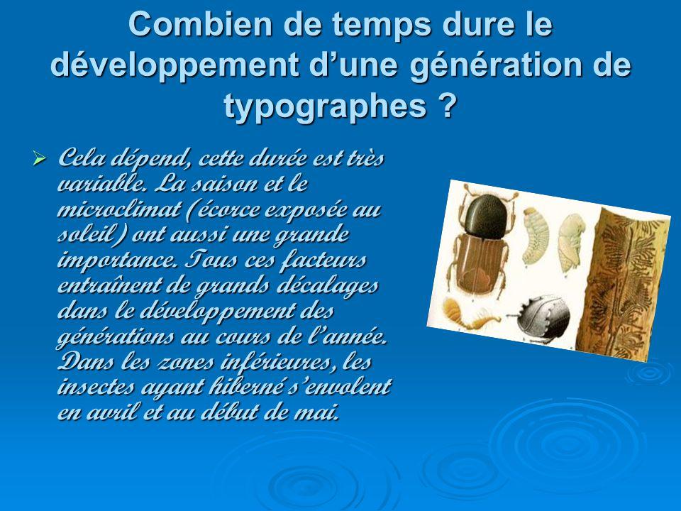 Combien de temps dure le développement dune génération de typographes ? Cela dépend, cette durée est très variable. La saison et le microclimat (écorc