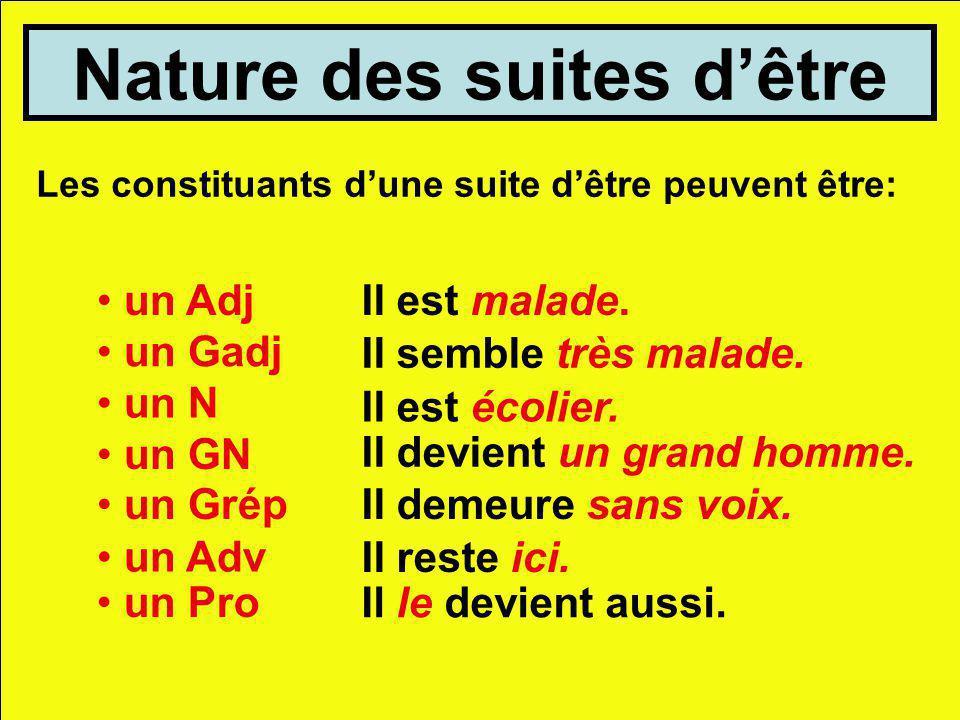 Nature des suites dêtre Les constituants dune suite dêtre peuvent être: un AdjIl est malade. un Gadj Il semble très malade. un N Il est écolier. un GN