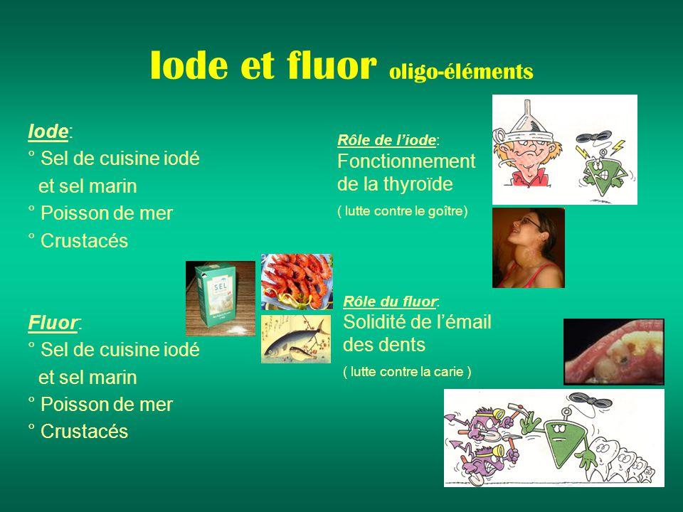 Iode et fluor oligo-éléments Iode: ° Sel de cuisine iodé et sel marin ° Poisson de mer ° Crustacés Fluor: ° Sel de cuisine iodé et sel marin ° Poisson de mer ° Crustacés Rôle de liode: Fonctionnement de la thyroïde ( lutte contre le goître) Rôle du fluor: Solidité de lémail des dents ( lutte contre la carie )