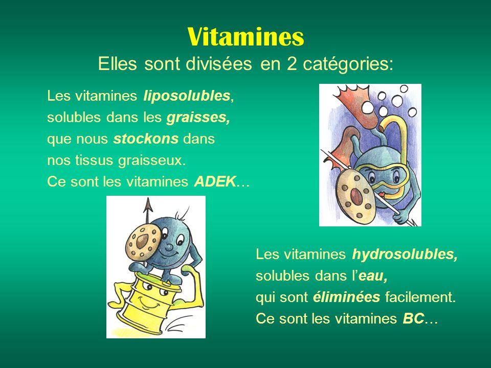 Vitamines Elles sont divisées en 2 catégories: Les vitamines liposolubles, solubles dans les graisses, que nous stockons dans nos tissus graisseux.